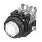 AR22E0L-10E3G by FUJI ELECTRIC